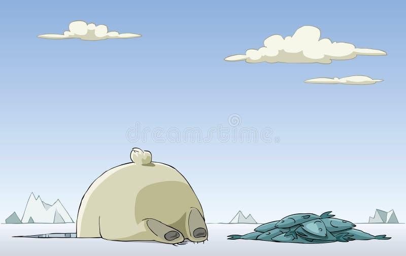 极性的熊 库存例证