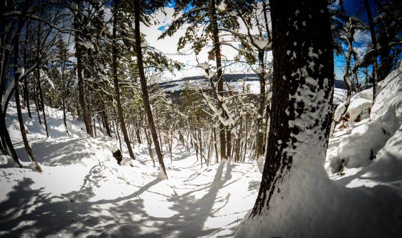 极端偏远地区雪板运动 库存图片