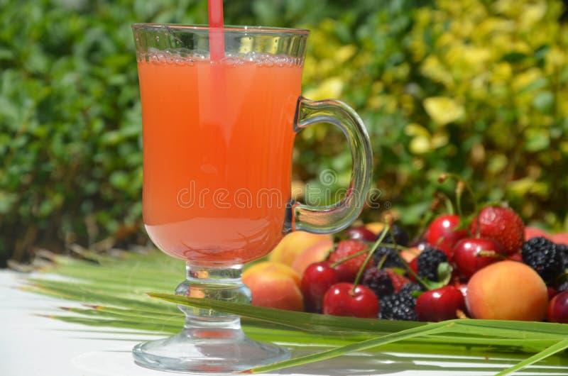 极端关闭杯鲜美热带酒精鸡尾酒用莓果或柠檬水与美丽的装饰在a 免版税库存照片