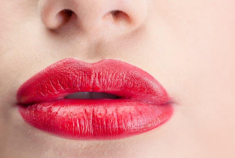 极端接近在华美的红色嘴唇 免版税库存图片