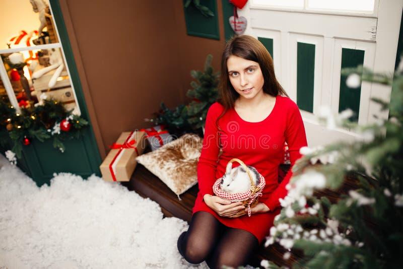 构想是新年好和圣诞快乐 库存照片
