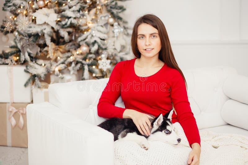 构想是新年好和圣诞快乐 免版税库存图片
