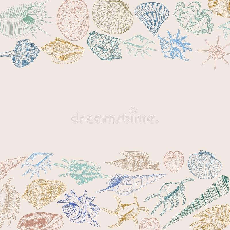 构成与海的独特的博物馆收藏的夏天概念轰击罕见的濒于灭绝的物种,软体动物卡其色的蓝绿色褐色co 向量例证