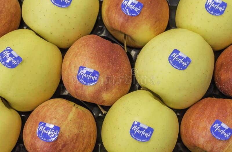 构成以另外苹果品种在市场上 马莱娜,1995年出生,是一个第一和苹果co多数名牌  免版税库存图片