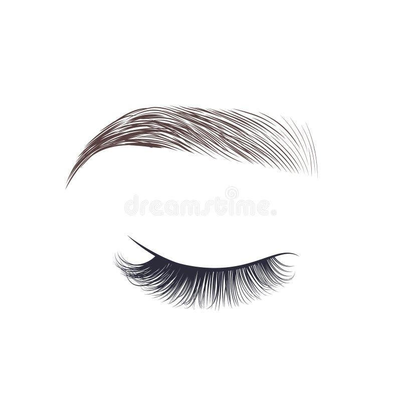 构成眼眉 与长的睫毛的闭合的眼睛 皇族释放例证
