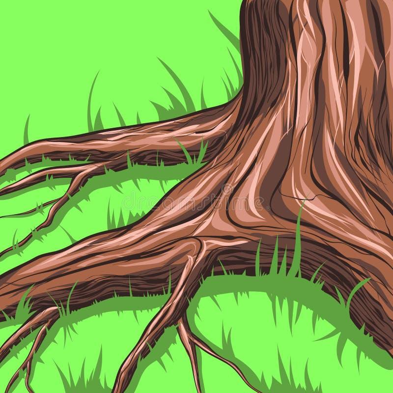 结构树和根 皇族释放例证
