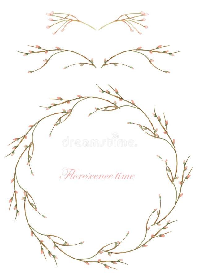 构筑边界、装饰花卉分支的元素和花圈与在白色背景的水彩绘的芽的, gree 向量例证