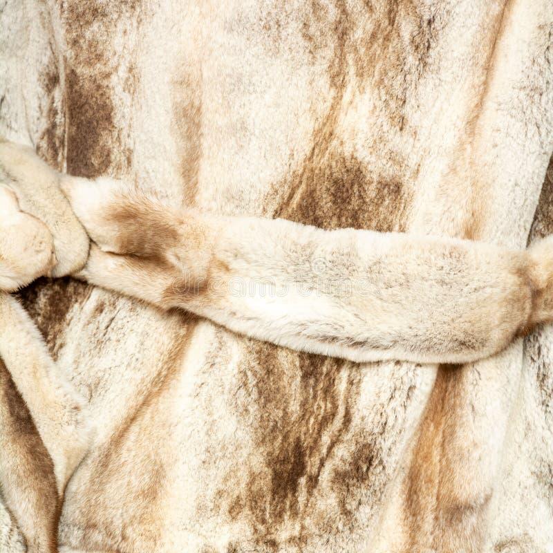 构造与传送带的自然被察觉的米黄棕色发光的毛皮 免版税库存照片