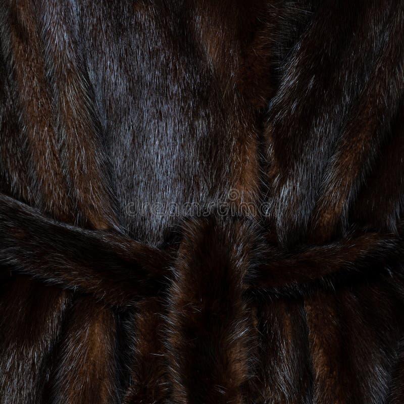 构造与传送带的自然被察觉的黑褐色发光的毛皮 图库摄影
