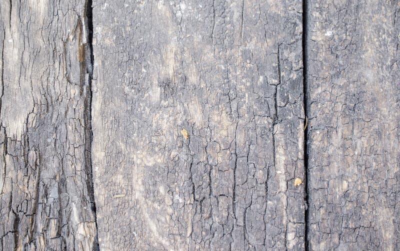 构造木头 免版税图库摄影