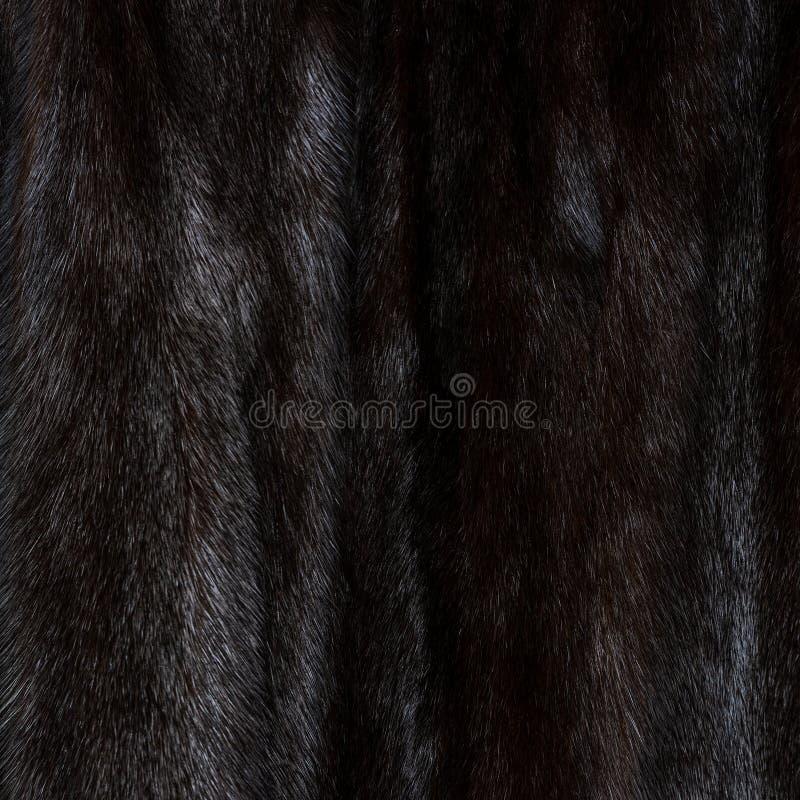 构造自然被察觉的黑和棕色发光的毛皮 库存照片