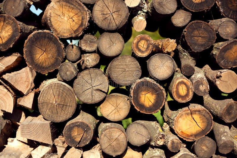 林业,堆木头,柴堆,堆,日志堆,木浆 库存照片