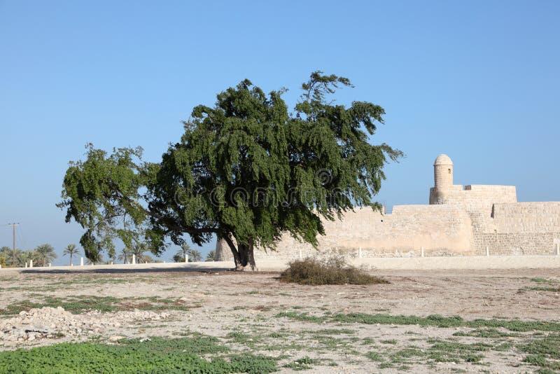 巴林的堡垒在麦纳麦,中东 库存照片