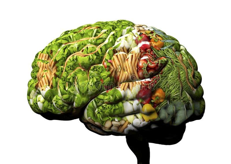 从水果和蔬菜做的人脑 库存例证