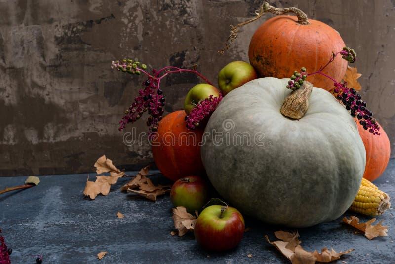 果子、玉米和南瓜 库存图片