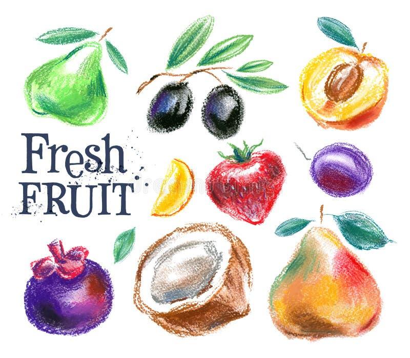 果子传染媒介商标设计模板 食物或收获 向量例证