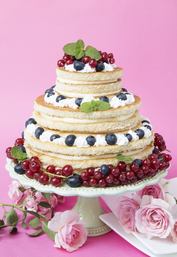 果子奶油蛋糕 库存图片