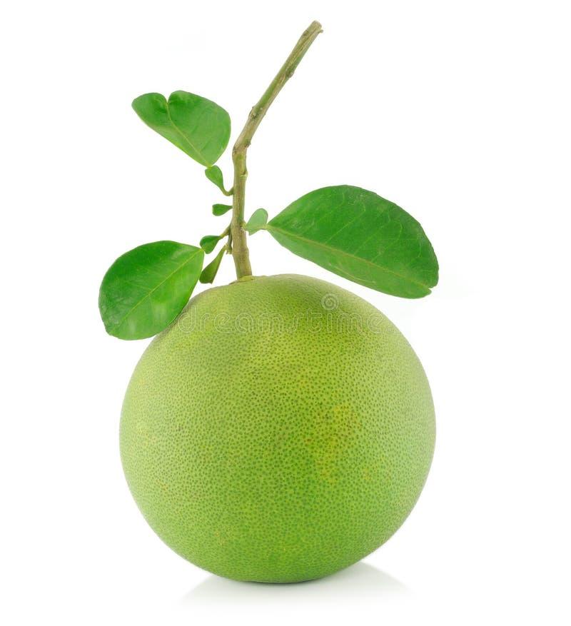 果子柚 免版税库存图片