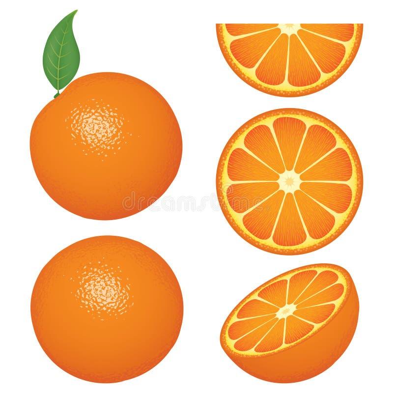 果子查出橙色片式 库存例证
