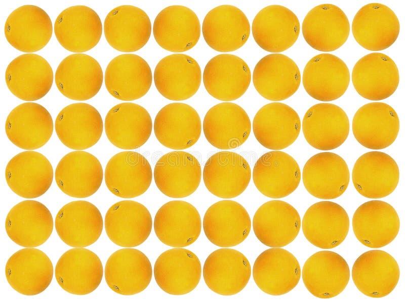 果子桔子模式 库存照片