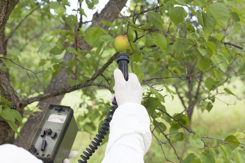 果子的评定的辐射能级 免版税库存照片