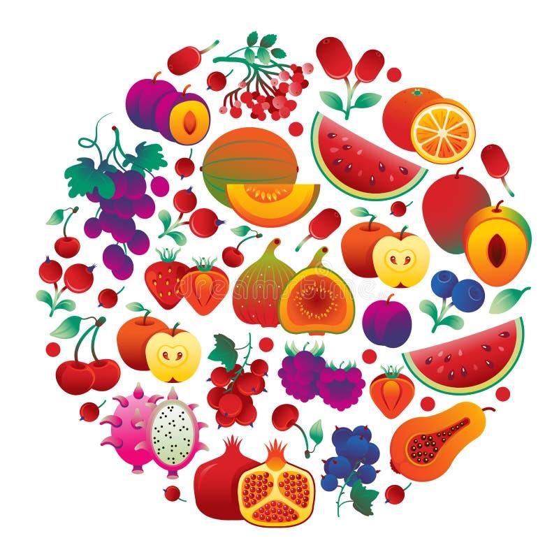 果子红色回合 向量例证