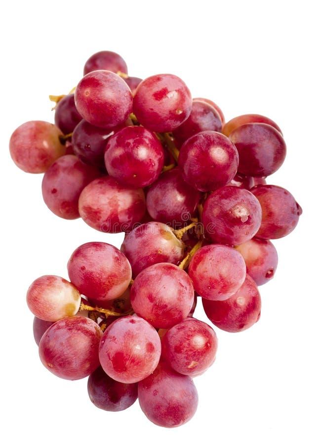 果子葡萄紫色 免版税库存照片