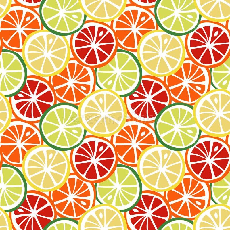 果子黄色柠檬绿色石灰橙红葡萄柚柑橘tropi 向量例证
