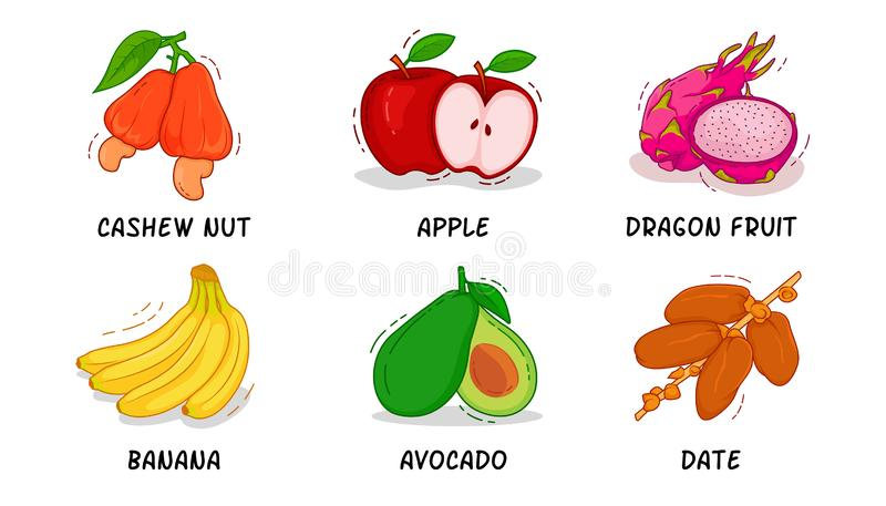 果子,果子汇集,腰果,苹果计算机,龙果子,香蕉,鲕梨,日期 向量例证