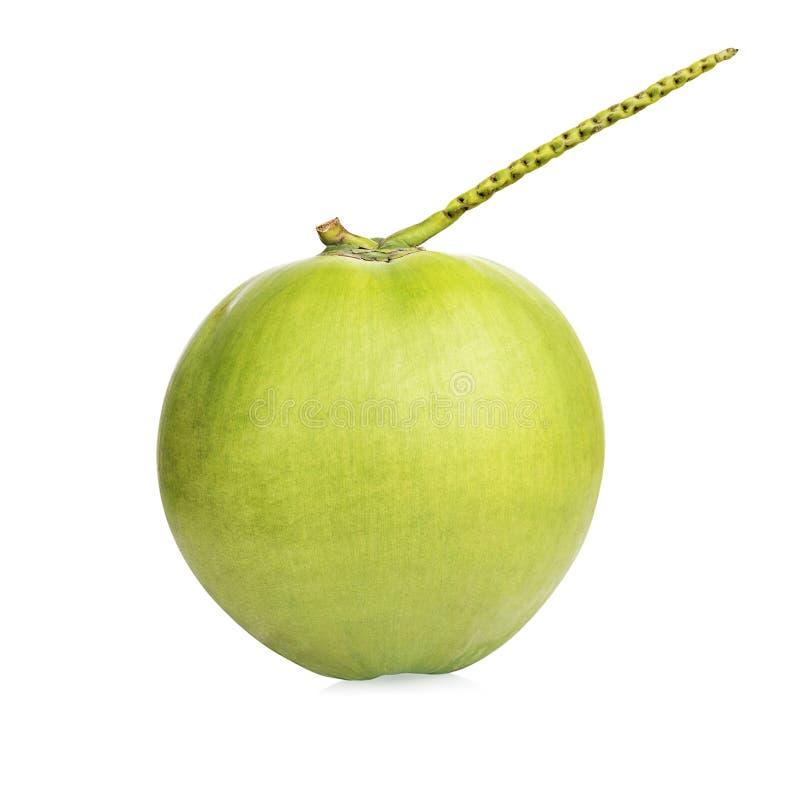 果子,椰子结果实,在白色背景的椰子 库存图片