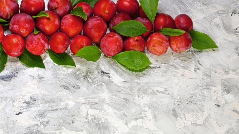 果子 与叶子的成熟红色李子在轻的背景,地道生活方式图象 季节性收获庄稼地方产物概念 免版税库存照片