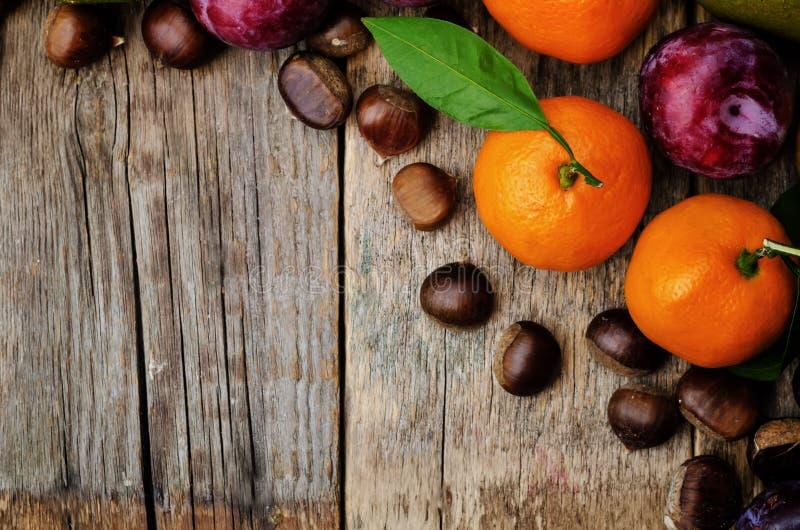 果子 蜜桔、李子、南瓜、苹果和栗子 图库摄影