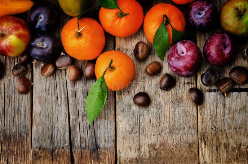 果子 蜜桔、李子、南瓜、苹果和栗子 免版税图库摄影