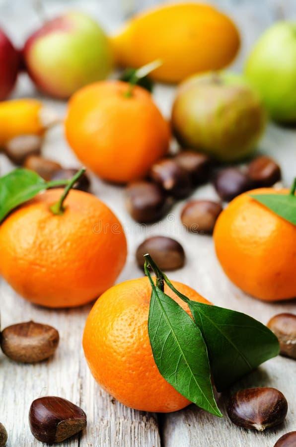 果子 蜜桔、李子、南瓜、苹果和栗子 库存照片