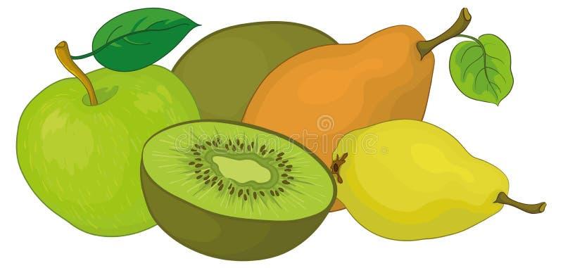 Download 果子 向量例证. 插画 包括有 有机, 本质, 猕猴桃, 问题的, 果子, 对象, 正餐, 烹调, 美食术 - 22358553