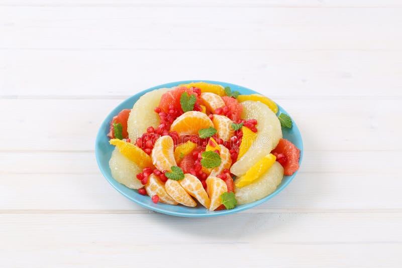 水果沙拉板材 库存图片