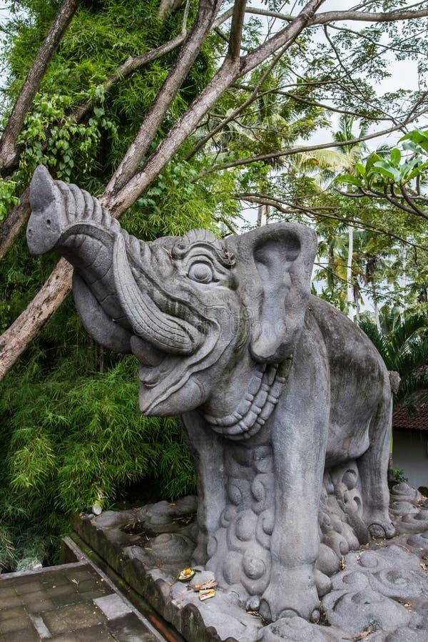 果阿Gajah大象 库存图片