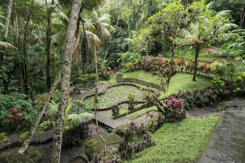 果阿Gajah寺庙大象洞的绿色庭院在Ubud,巴厘岛附近 免版税库存照片