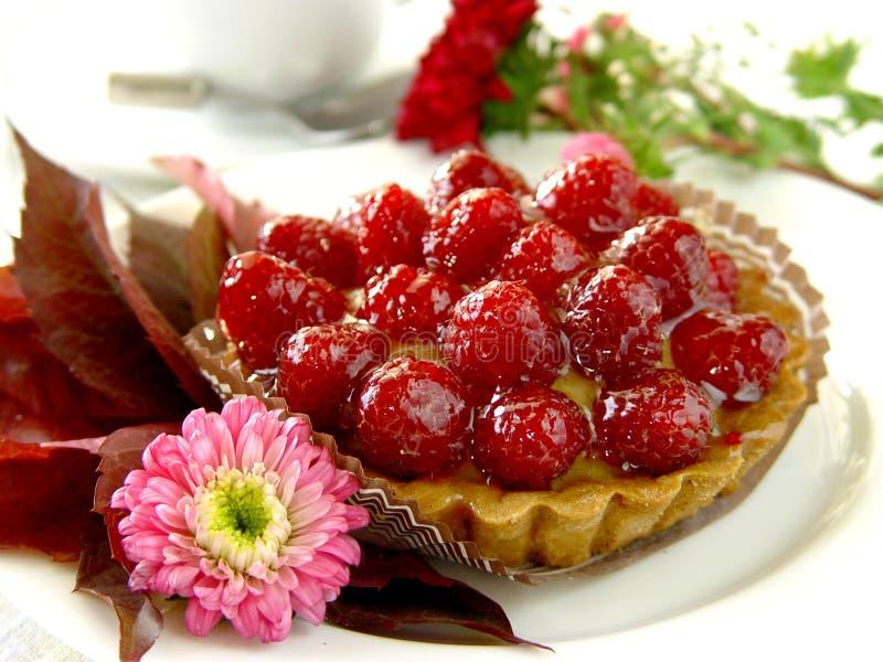 果馅饼莓 库存图片