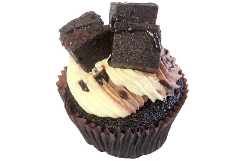 果仁巧克力杯形蛋糕 免版税库存图片