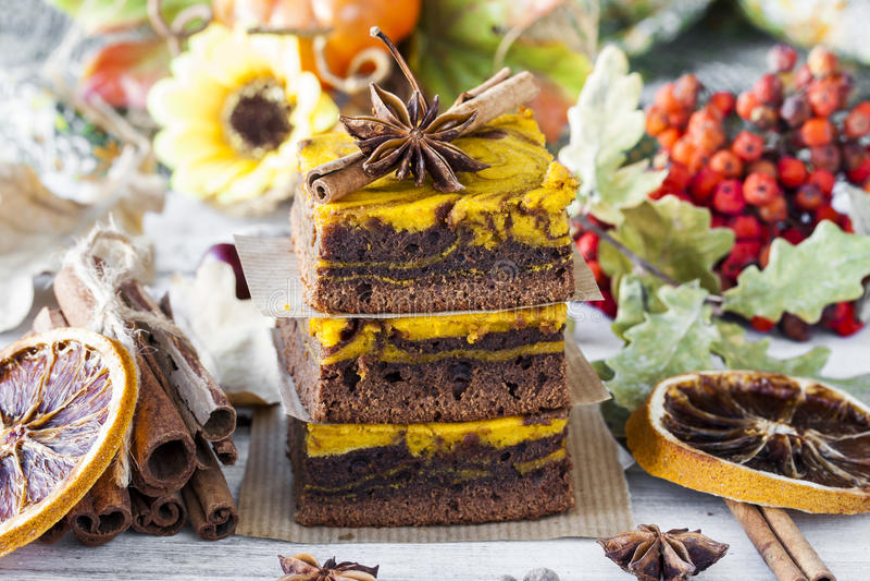 果仁巧克力用南瓜和巧克力 免版税库存照片