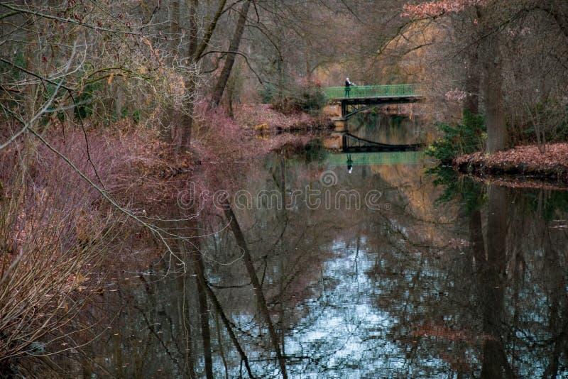 枝杈和分支在前景和模糊的秋天风景在背景 与绿色桥梁的秋天风景在湖 库存照片