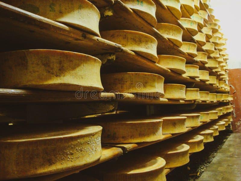 架子用开胃现成的乳酪在一个小乳酪牛奶店的地窖里 免版税库存图片