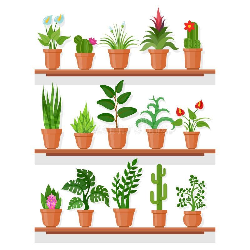 架子的室内植物 向量例证
