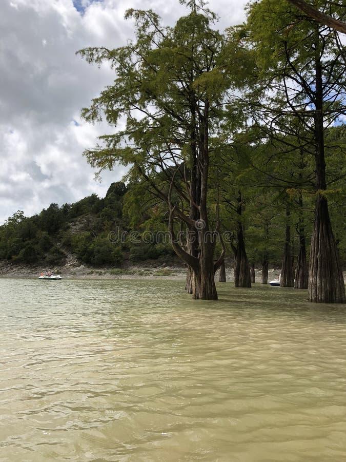 柏树,树,湖,sukko,云彩,自然 库存照片