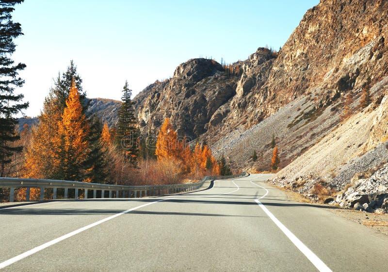 柏油路在日出的秋天 免版税图库摄影