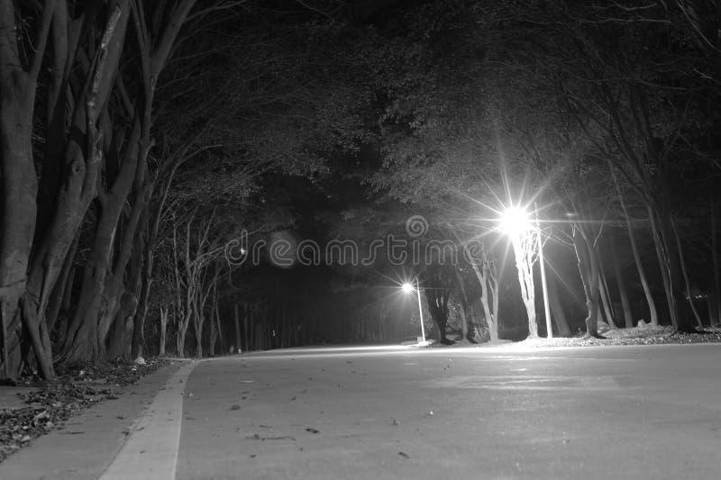 柏油路在晚上 免版税库存照片