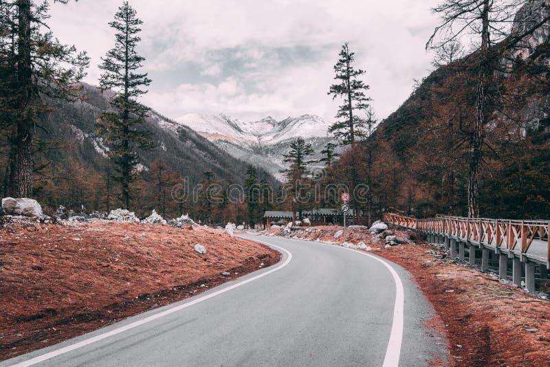 从柏油路的风景冬天视图在用雪和杉树盖的山在背景的路一边 免版税库存照片