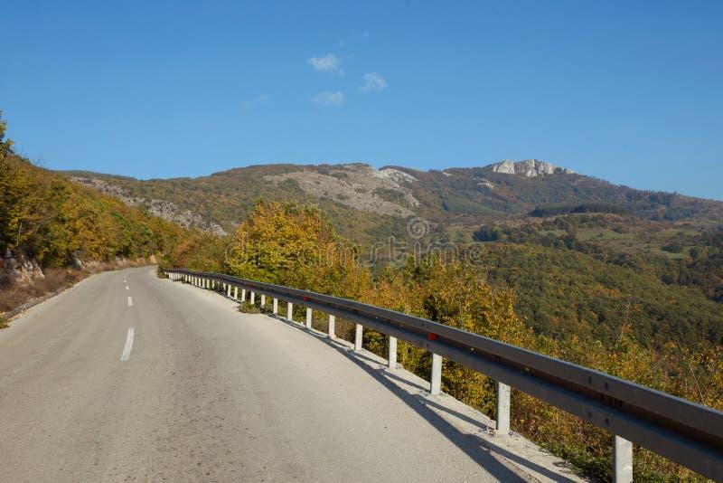 柏油路通过绿色领域和在秋天天清洗蓝天 免版税库存照片