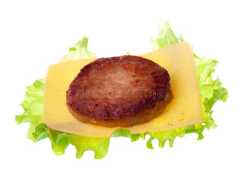 柏蒂,乳酪,在白色backgroun隔绝的莴苣植物 免版税库存图片